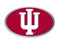 Indiana Auto Emblem